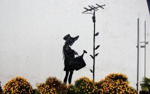 13-flower-aerial