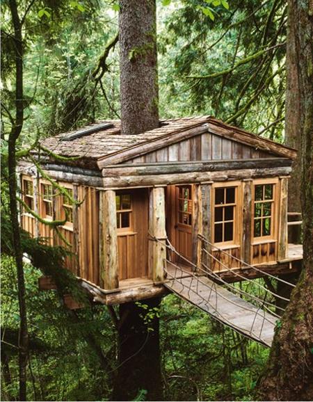 tree houses 4